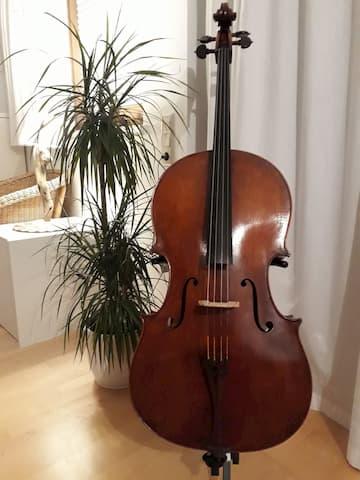 Pädagogik Violoncello